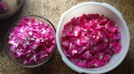Rose Petals In Water Photo Free