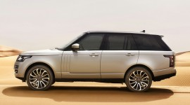 Rover Wallpaper Download Free