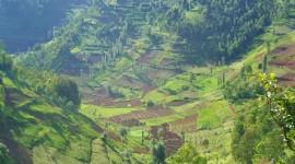 Rwanda Wallpaper Background