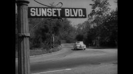 Sunset Boulevard Photo