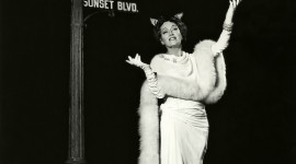 Sunset Boulevard Wallpaper For Android