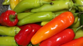 Sweet Pepper Desktop Wallpaper Free