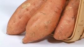 Sweet Potato Wallpaper Download Free