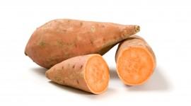 Sweet Potato Wallpaper HQ