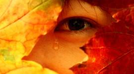 Tears Wallpaper