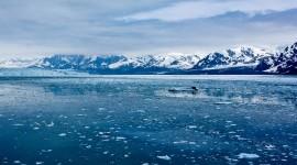 The Arctic Ocean Wallpaper