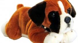 Toy Puppy Desktop Wallpaper