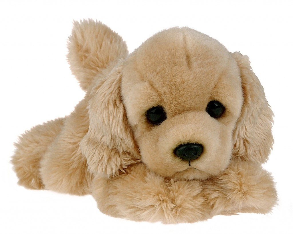 Toy Puppy wallpapers HD