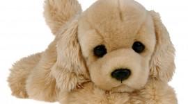 Toy Puppy Wallpaper