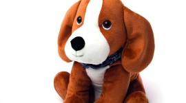 Toy Puppy Wallpaper For Android#2