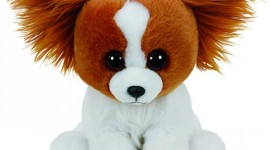 Toy Puppy Wallpaper For Android#4