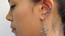 Unusual Earrings Photo