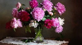 4K Bouquet Of Peonies Photo Download