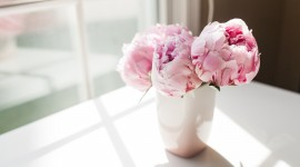 4K Bouquet Of Peonies Photo#1