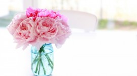 4K Bouquet Of Peonies Wallpaper 1080p