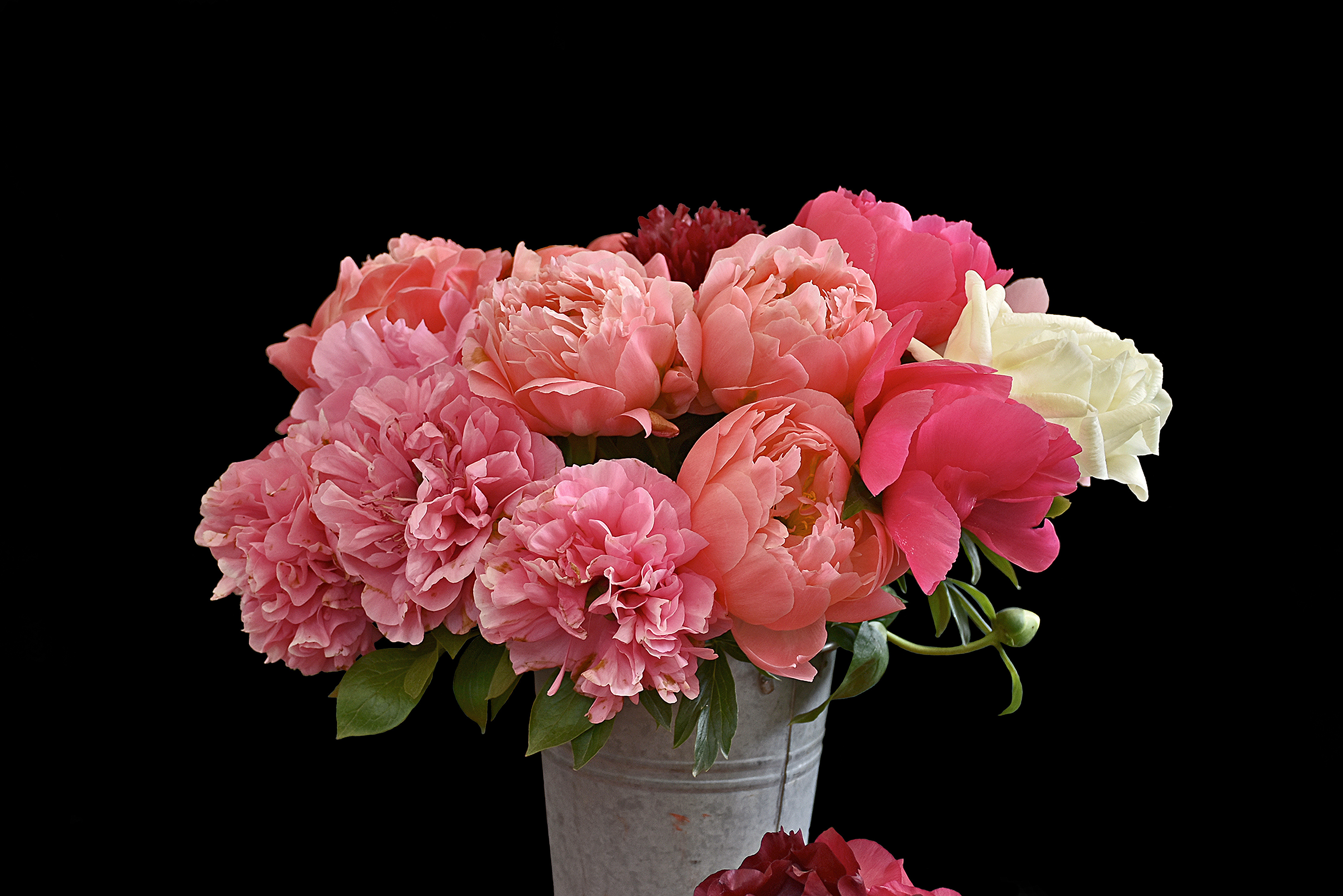 4K Bouquet Of Peonies Wallpapers High Quality   Download Free