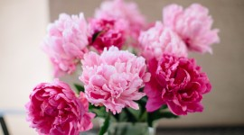 4K Bouquet Of Peonies Wallpaper Free