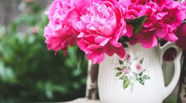 4K Bouquet Of Peonies Wallpaper Full HD