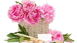 4K Bouquet Of Peonies Wallpaper HQ#1