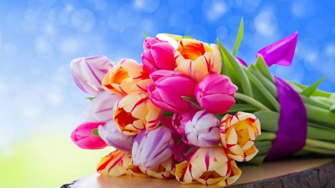 4K Bouquet Tulips wallpapers high quality
