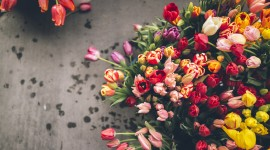 4K Bouquet Tulips Wallpaper Background