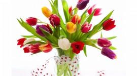 4K Bouquet Tulips Wallpaper Free