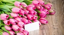 4K Bouquet Tulips Wallpaper HQ#1