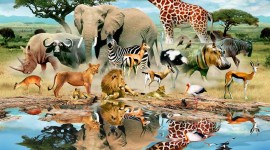 Animal Watering Hole Image
