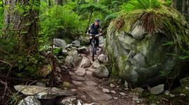 Bike Path Wallpaper Download Free