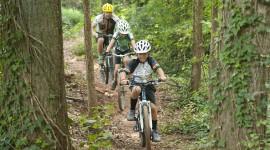 Bike Path Wallpaper For IPhone Free