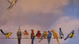 Birds On Branch Wallpaper For Mobile