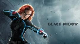 Black Widow Wallpaper Download Free