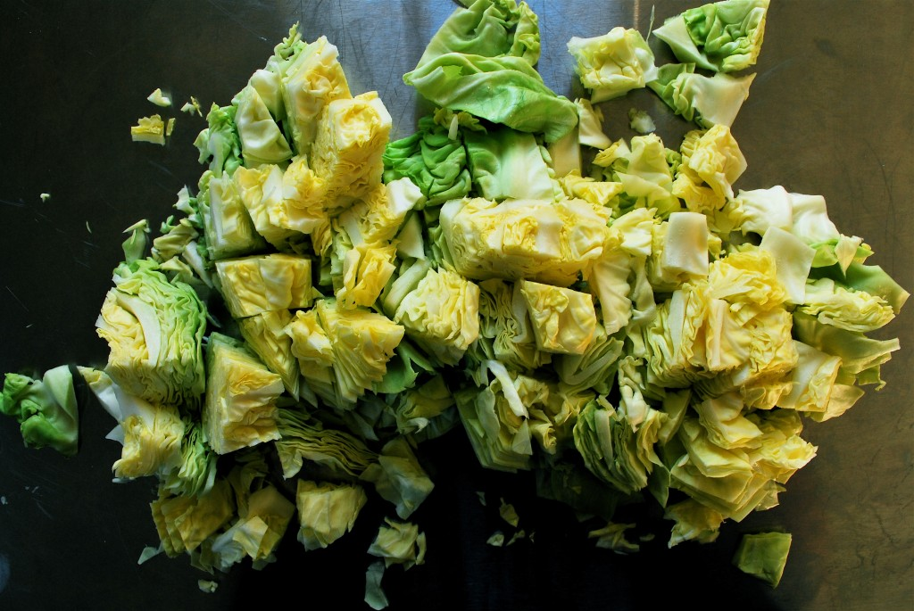 Boiled Cabbage wallpapers HD