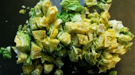 Boiled Cabbage Best Wallpaper