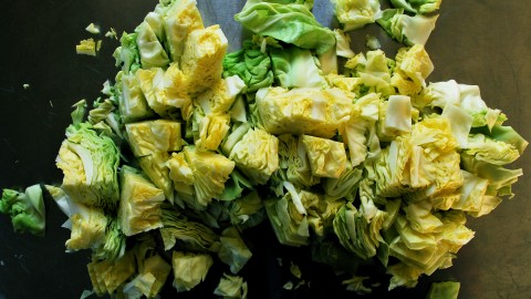 Boiled Cabbage wallpapers high quality
