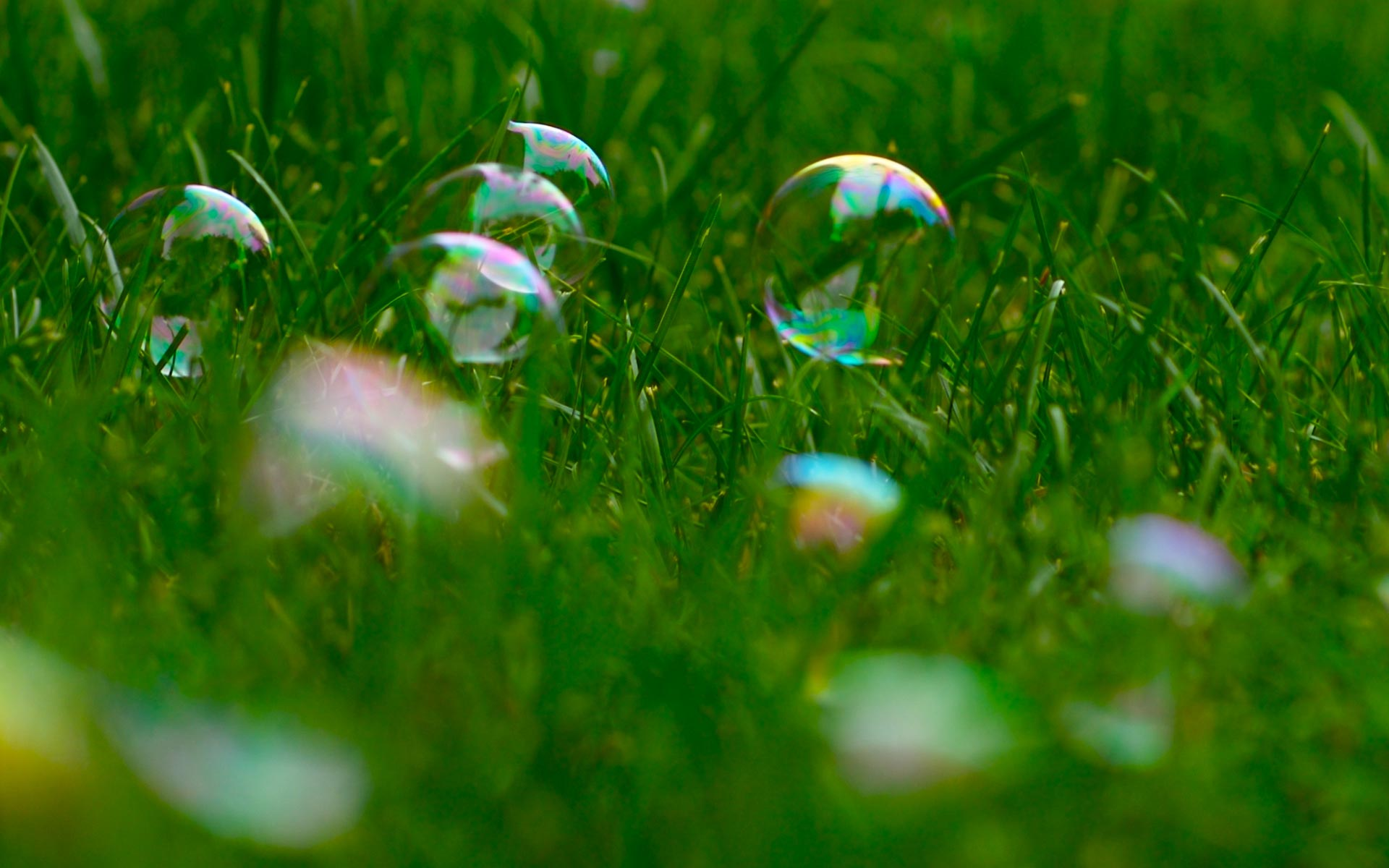 Bubbles Grass Wallpapers High Quality | Download Free