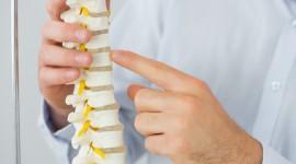Chiropractor Wallpaper Download Free