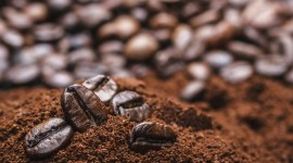 Coffee Granules Wallpaper HQ