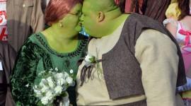 Fiona Shrek Wallpaper Download Free