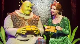 Fiona Shrek Wallpaper For IPhone