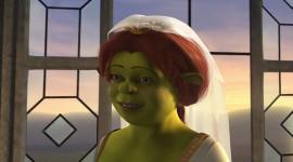 Fiona Shrek Wallpaper HD