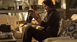 John Wick Wallpaper Download Free