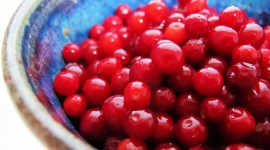Lingonberry Wallpaper Full HD
