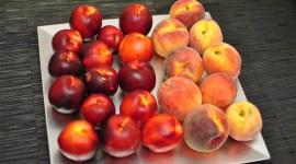 Nectarines Wallpaper Download Free