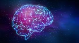 Neurons Wallpaper Background