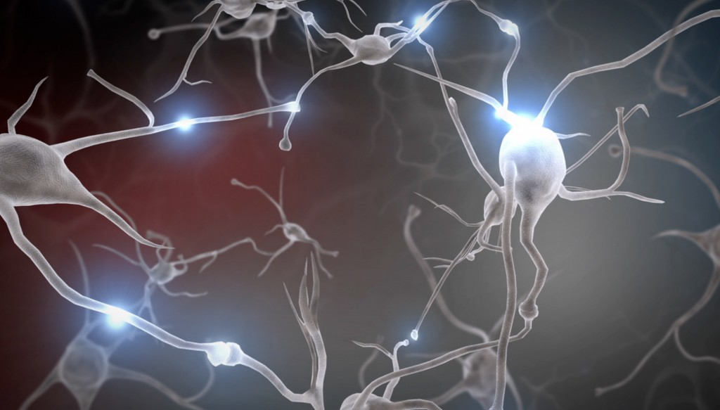Neurons wallpapers HD