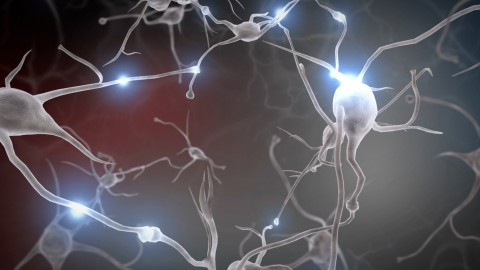 Neurons wallpapers high quality