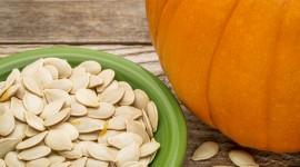 Pumpkin Seeds Wallpaper Download