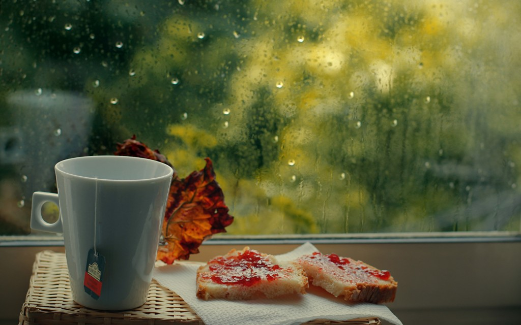 Rainy Morning wallpapers HD
