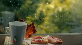Rainy Morning Best Wallpaper